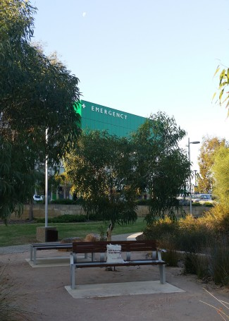 Garden at Fiona Stanley Hospital Perth